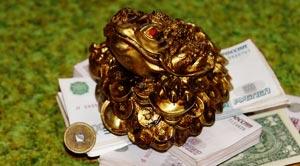 money_zhaba