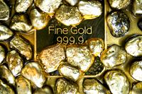 Gold_sam