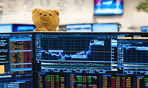 bear_forex